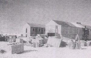 Basi IND Dakshin Gangotri 16-1-1984