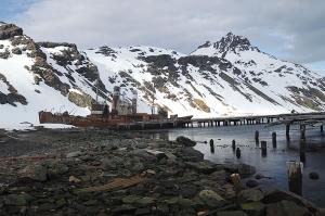 Wreck of whaler at Grytviken