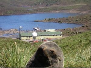bird_island 2006